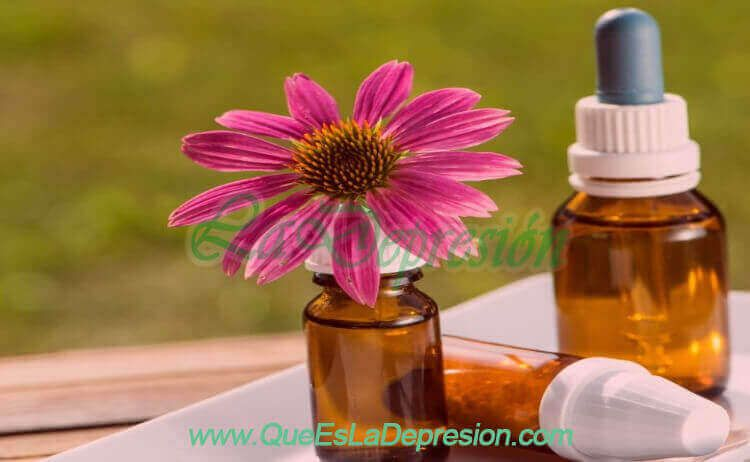 Flores de Bach, eficacia para tratar la depresión